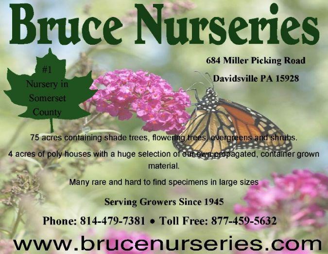 Bruce Nurseries
